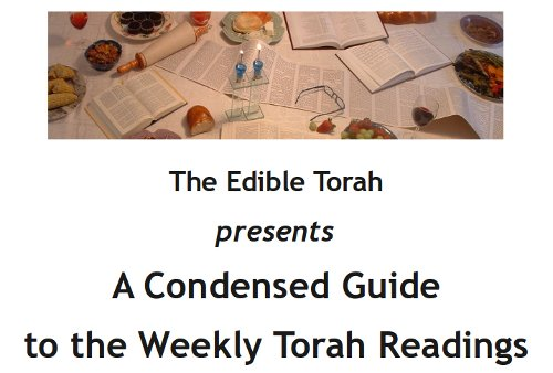 NEW: The Condensed Guide to the Weekly Torah Readings